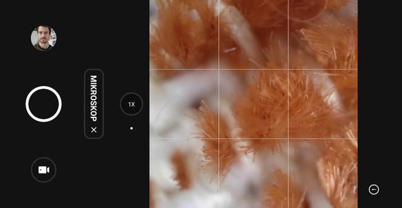 Fazit: Kamera-Upgrade mit neuer Mikroskop-Kamera lassen das Fotografen-Herz höher schlagen