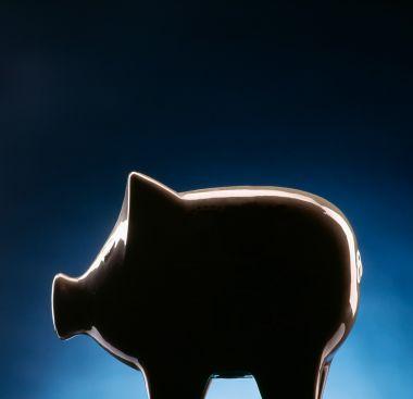Kosten: Durch die Cloud-Nutzung lassen sich Kosten sparen